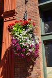 Huge hanging flower baskets Royalty Free Stock Photos