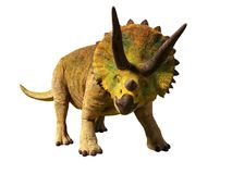 Triceratops horridus of the late Cretaceous period between 66 and 68 million years ago 3d render isolated on white background. Huge herbivore dinosaur in natural Stock Photo