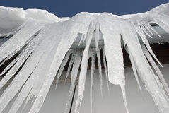 Huge icicles Royalty Free Stock Image