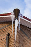 Huge icicles hanging from the roof of the house Royalty Free Stock Image