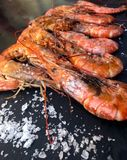 Huge king prawns. stock photography