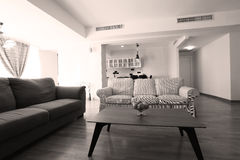 Huge living room with open kitchen. Modern living room with new couches and table stock image