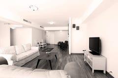 Huge livingroom Stock Images