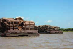 Transportation of timber along the river Stock Image