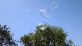 Huge long soap bubles flying in the sky. Two devices for creating a bubble. stock video