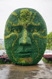 A huge mask made by plant Stock Photo