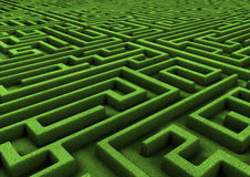 Huge maze Royalty Free Stock Photos