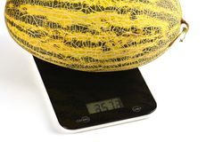 Huge melon on scales Royalty Free Stock Photography