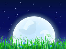 Huge moon with grass meadow Royalty Free Stock Image
