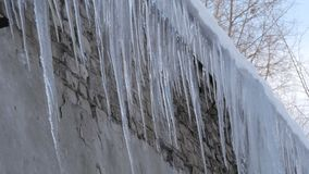 A huge number of large melting icicles on the roof of the house in winter