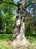 Huge old oak with a wooden sculpture in it Stock Photo