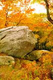 Huge old rock sits among fall colors. Stock Photos