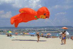 Huge orange bear flying kite Stock Image