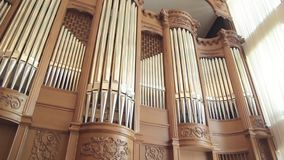 Huge organ with pipes. 1 stock video