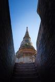 Huge pagoda Royalty Free Stock Photo