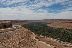 Huge palm grove in Ziz river valley, Morocco. Stock Photo