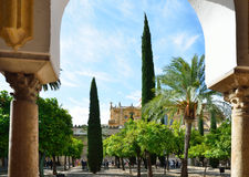 Huge patio of the Mosque-Cathedral in Cordoba Royalty Free Stock Photography