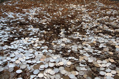 Huge pile of coins. Huge pile of Bulgarian coins Stock Photo
