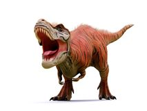 Tyrannosaurus rex, T-rex dinosaur from the Jurassic period 3d rendering isolated with shadow on white background. Huge predator dinosaur in intense colours stock photography