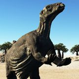 Huge prehistoric dinosaur. Iguanodon standing on hind legs in jurassic desert royalty free stock photography