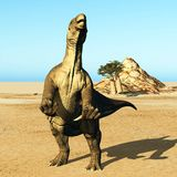 Huge prehistoric dinosaur. Iguanodon standing on hind legs in jurassic desert royalty free stock image