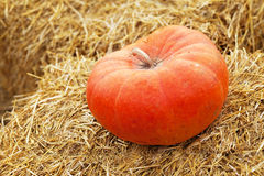 Huge pumpkin in hay Royalty Free Stock Photos