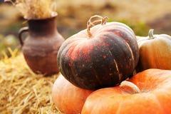 Huge pumpkin in hay Stock Photos