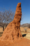 Huge red termite mound in Africa. Huge red, orange termite mound in Africa, Namibia Stock Photo
