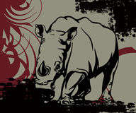Huge rhinoceros Royalty Free Stock Images