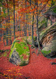 Huge rock in the autumn forest. Royalty Free Stock Photos