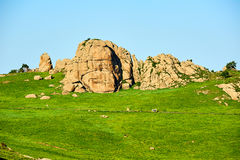 The huge rock on the meadow Royalty Free Stock Image
