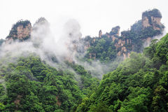 Huge Rock Mountains Surrounded by Green Trees and White Mist Clouds. Epic Mountain Landscape Stock Images