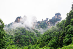 Huge Rock Mountains Surrounded by Green Trees and White Mist Clouds. Epic Mountain Landscape Stock Photography
