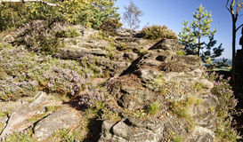 A huge rock wall with small bushes in certain areas Stock Photos