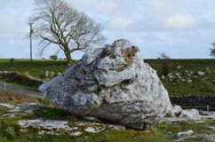 Large rocks from the Burren park right off the road. Huge rocks from the Burren park on the side of a road Stock Images