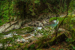 Huge rocks and a stream in a green Park. Philippines. Valencia, island Negros. Stock Photography