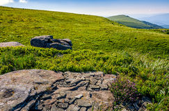 Huge rocks on top of mountain ridge. Mountain summer landscape. meadow with huge rocks among the grass on top of the hillside near the peak of mountain ridge Royalty Free Stock Photos