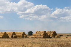 Huge round hay bales Royalty Free Stock Photo