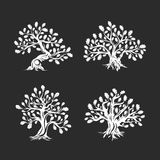 Huge and sacred oak tree silhouette logo  on background. Royalty Free Stock Photography