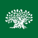 Huge and sacred oak tree silhouette logo badge isolated on green background. Royalty Free Stock Photo