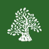 Huge and sacred oak tree silhouette logo badge isolated on green background. Royalty Free Stock Photography