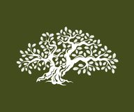Huge and sacred oak tree silhouette logo badge isolated on green background. Stock Images