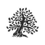 Huge and sacred oak tree silhouette logo badge isolated on white background. Royalty Free Stock Images