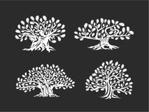 Huge and sacred oak tree silhouette logo isolated on background. Modern vector national tradition green plant icon sign design set. Premium quality organic vector illustration