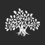 Huge and sacred oak tree silhouette logo isolated on dark background. Royalty Free Stock Image