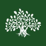 Huge and sacred oak tree silhouette logo isolated on green background. Royalty Free Stock Photography