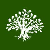 Huge and sacred oak tree silhouette logo isolated on green background. Stock Photo