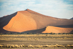 A huge sand dune, covered by rare dry Namibian vegetation. A huge sand dune, covered by plants, and rare dry vegetation at the foreground at Sossusvlei region of stock image