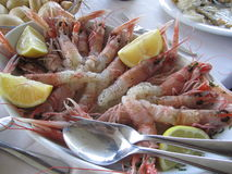 Huge shrimps with lemon Stock Photography