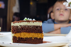 Huge slice of delicious layered cake Royalty Free Stock Photography